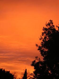 ciel-matin-d-automne-004.jpg