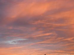 ciel-matin-d-automne-005.jpg
