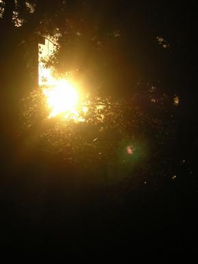 soleil-contre-jour.jpg