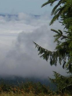 vallee-brouillard-033.jpg